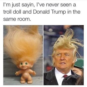 Top 10 Donald Trump Hair Memes Terrific Top 10