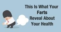 farts2